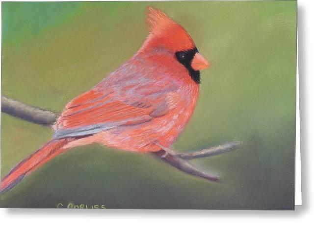 Bonded Pair - Male Cardinal Greeting Card