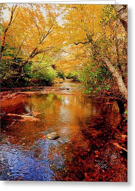 Boone Fork Stream Greeting Card