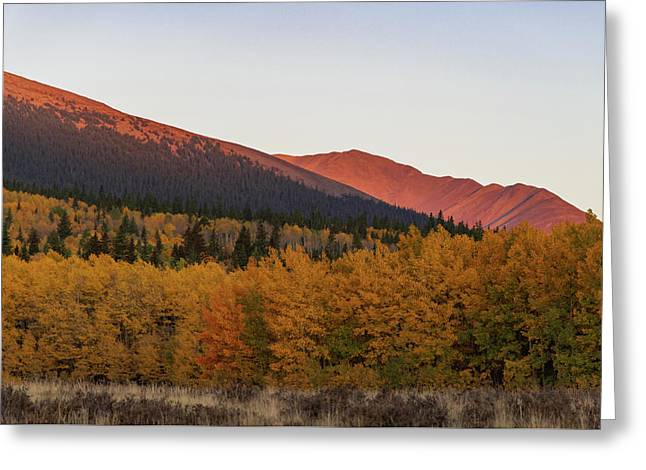 Boreas Pass Greeting Card