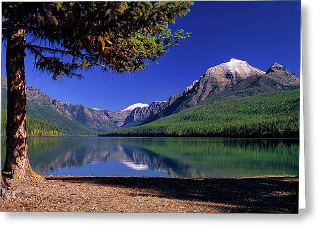 Bowman Lake Greeting Card