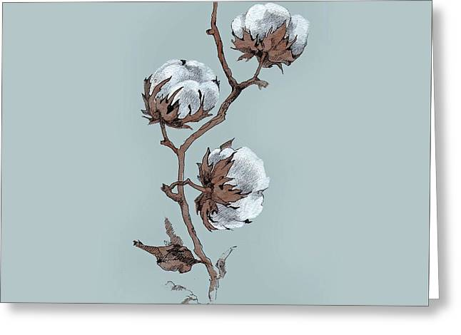 Branch Of Fluffy Cotton Greeting Card