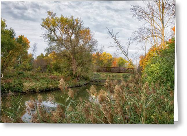 Greeting Card featuring the photograph Bridge Over Ellicott Creek by Guy Whiteley