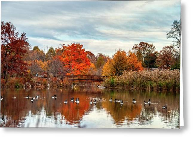 Greeting Card featuring the photograph Bridge Over The Pond by Mark Dodd