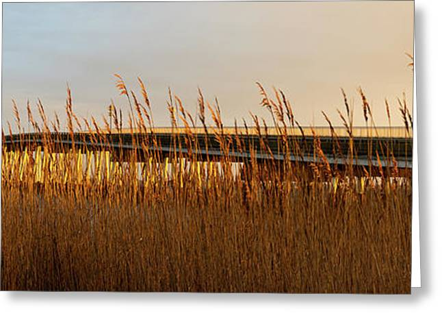 Bridge To Assateague Island National Seashore Greeting Card