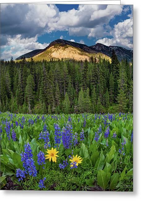 Bridger Teton National Forest Greeting Card by Leland D Howard