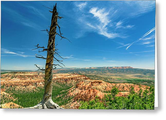 Bryce Canyon Np - Bryce Point Greeting Card