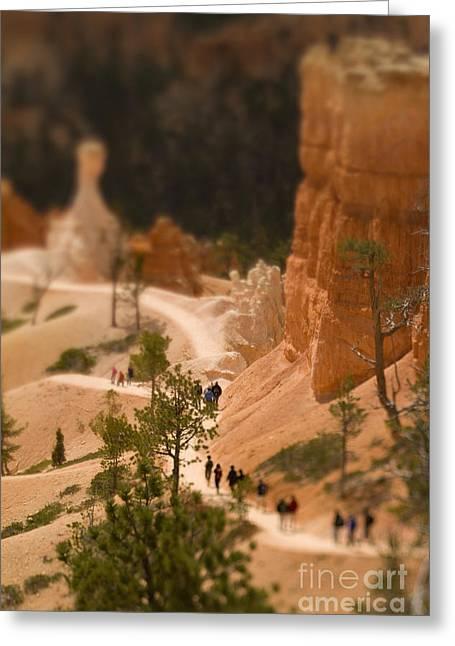 Bryce Canyon Tilt-shift Greeting Card