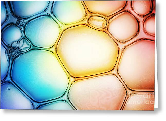 Bubble Background Greeting Card