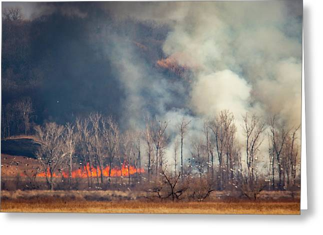 Greeting Card featuring the photograph Burning Squaw Creek by Jeff Phillippi