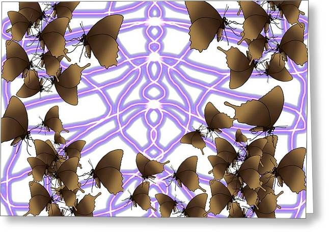 Butterfly Patterns 14 Greeting Card