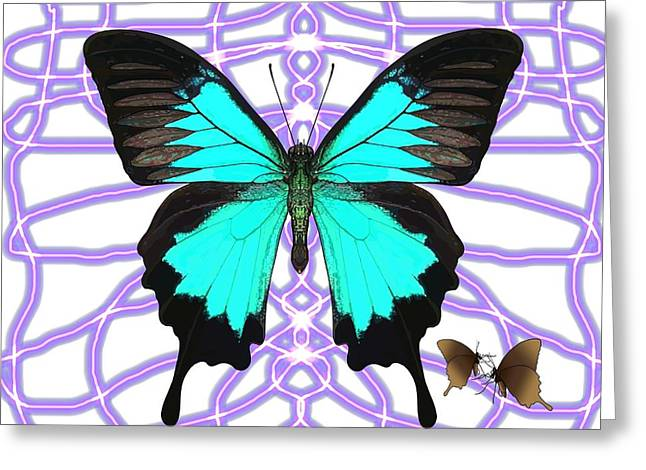Butterfly Patterns 18 Greeting Card