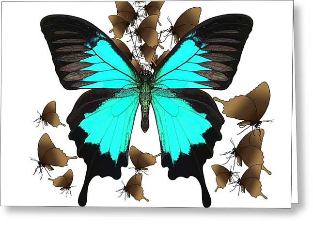 Ulysses Butterfly All A Flutter Greeting Card