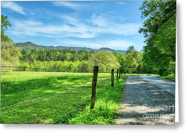 Greeting Card featuring the photograph Cades Cove In Spring by Mel Steinhauer