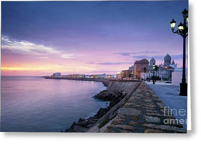 Greeting Card featuring the photograph Cadiz Skyline And Cathedral by Pablo Avanzini
