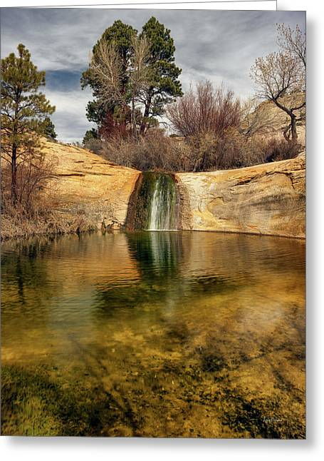 Calf Creek Pool Greeting Card by Leland D Howard