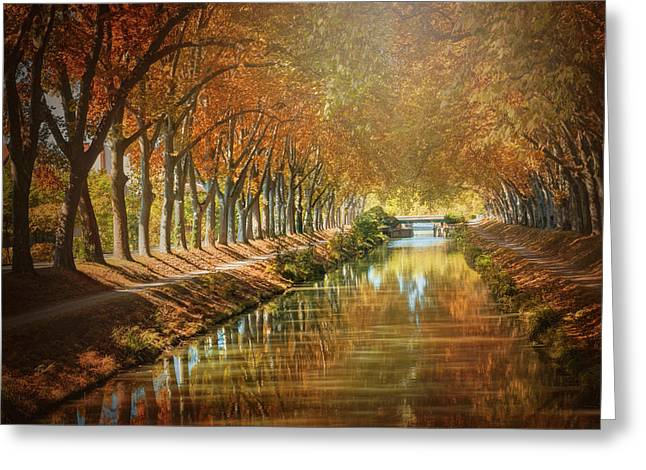 Canal De Brienne Toulouse France In Autumn  Greeting Card