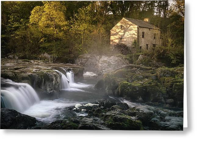 Cenarth Falls At Sunrise Greeting Card