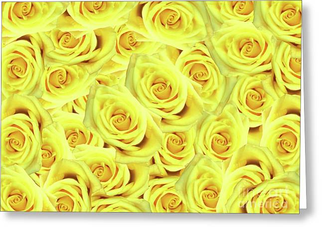 Candlelight Roses Greeting Card