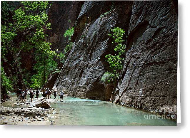 Canyoning In The Narrows, Zion Canyon Greeting Card