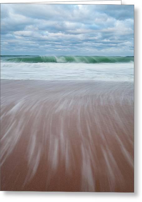 Cape Cod Seashore Greeting Card