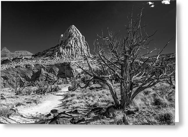 Capitol Reef Np - But, It's A Dry Heat... Greeting Card
