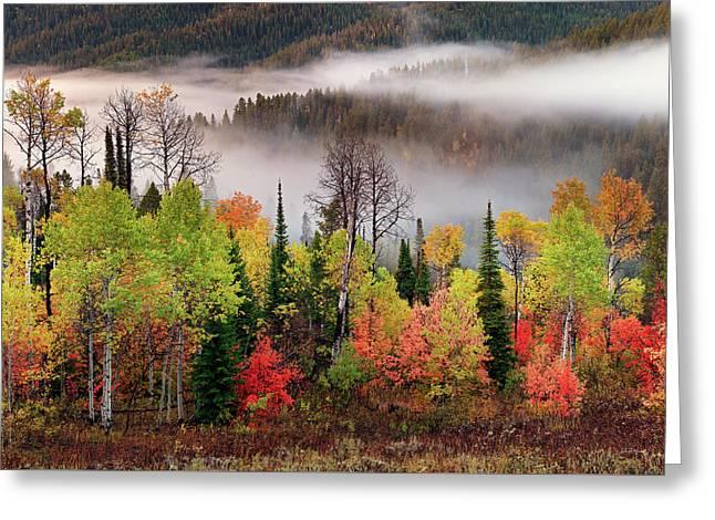 Caribou Canyon Greeting Card by Leland D Howard