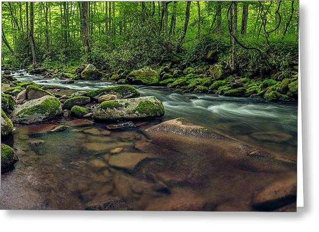 Cascades Of The Oconaluftee Greeting Card