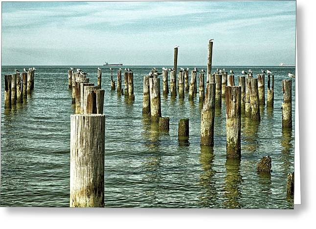 Greeting Card featuring the photograph Casino Pilings At Cape Charles Virginia by Bill Swartwout Fine Art Photography