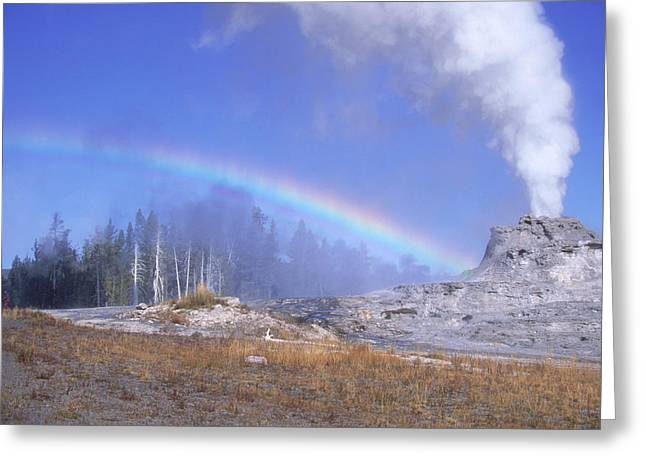 Castle Geyser And Rainbow Greeting Card by David Hosking