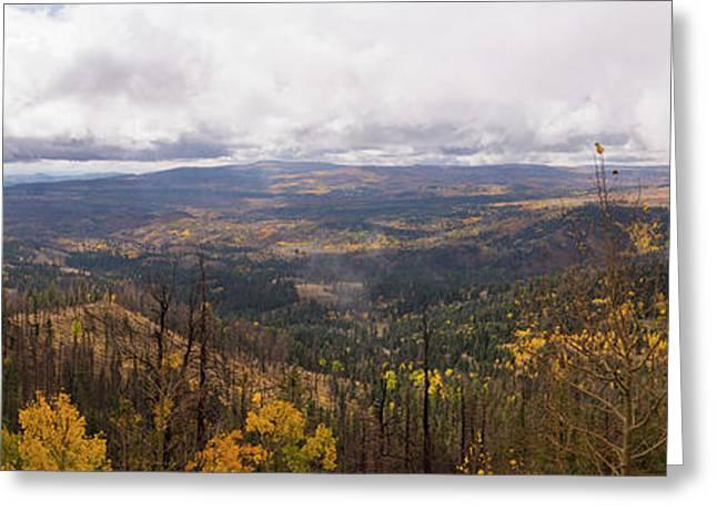 Cedar Mountain Top  Greeting Card