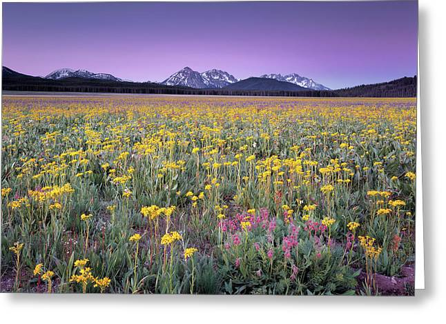 Central Idaho Color Greeting Card by Leland D Howard