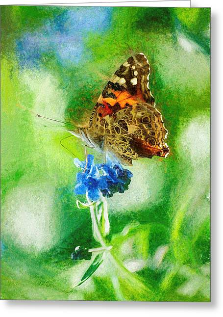 Chalky Painted Lady Butterfly Greeting Card