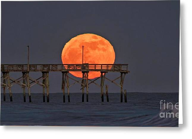 Cheddar Moon Greeting Card