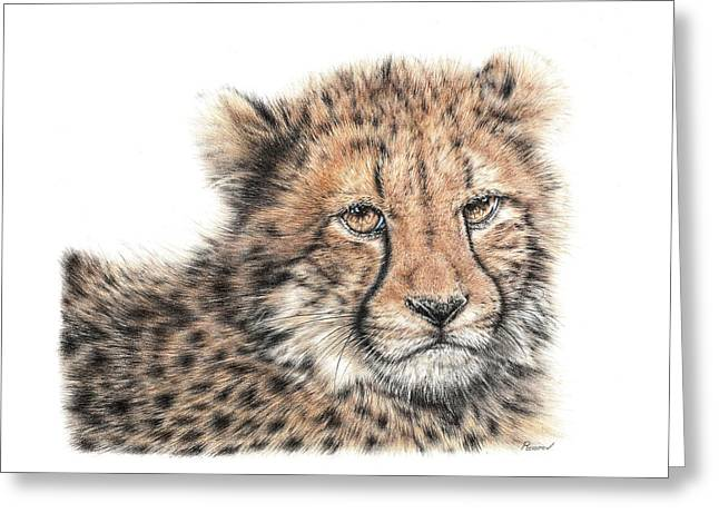 Cheetah Cub Greeting Card