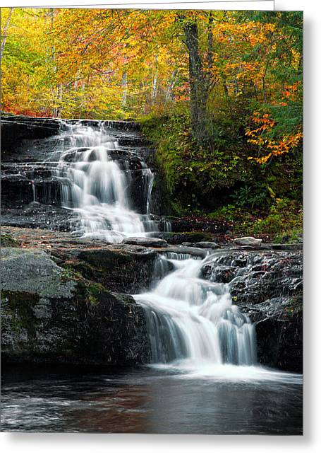 Choke Creek Falls Greeting Card by Michael Gadomski