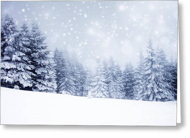 Christmas Background With Snowy Fir Greeting Card