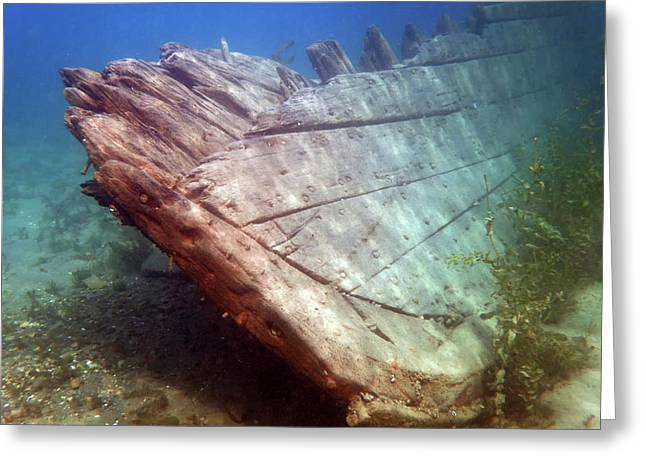 Greeting Card featuring the photograph City Of Grand Rapids Shipwreck Ontario Canada 8081801c by Rick Veldman