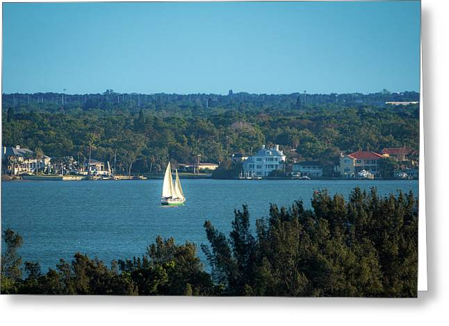 Greeting Card featuring the photograph Clearwater Sails by Jeff Phillippi