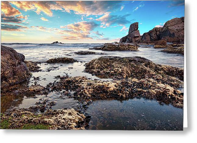 Greeting Card featuring the photograph Coast At Sozopol, Bulgaria by Milan Ljubisavljevic