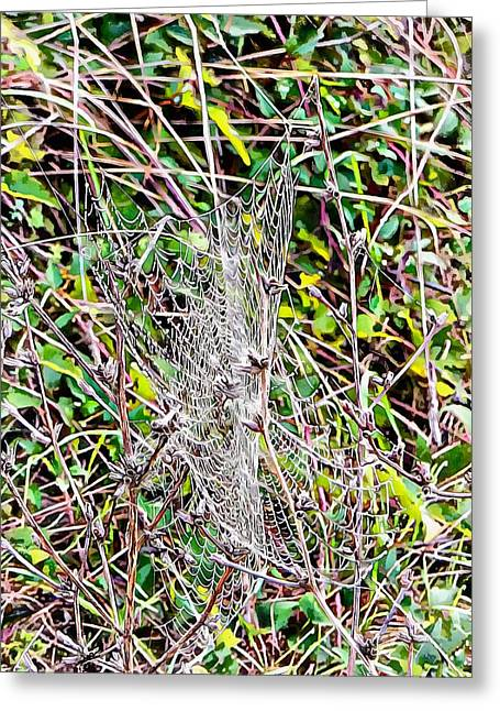 Greeting Card featuring the photograph Cobweb Study 1 by Dorothy Berry-Lound