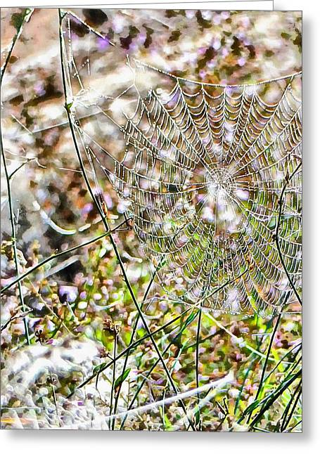 Greeting Card featuring the photograph Cobweb Study 4 by Dorothy Berry-Lound