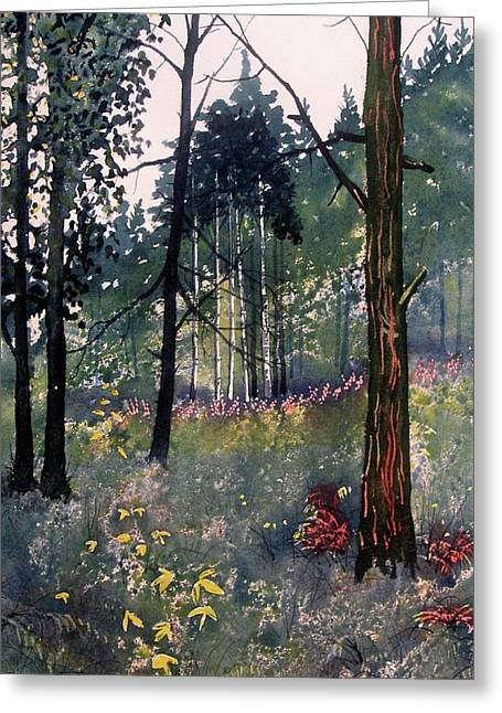 Codbeck Forest Greeting Card