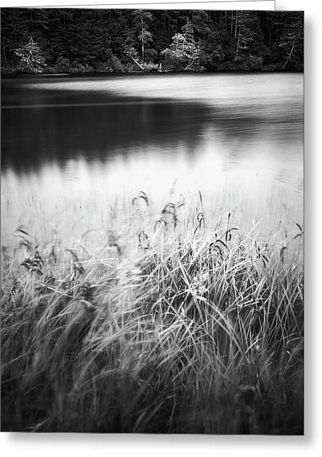 Coffenbury Lake Greeting Card