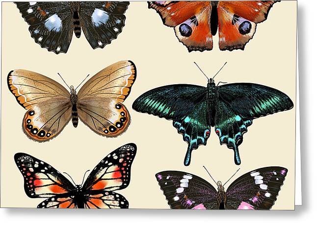 Collection Of Vector Colorful Realistic Greeting Card