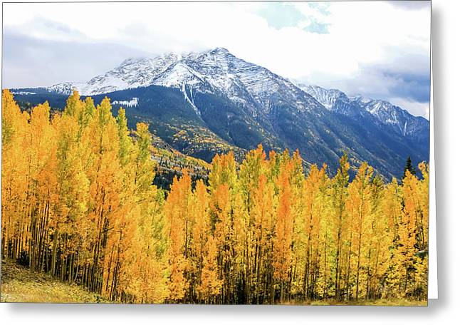 Colorado Aspens And Mountains 2 Greeting Card