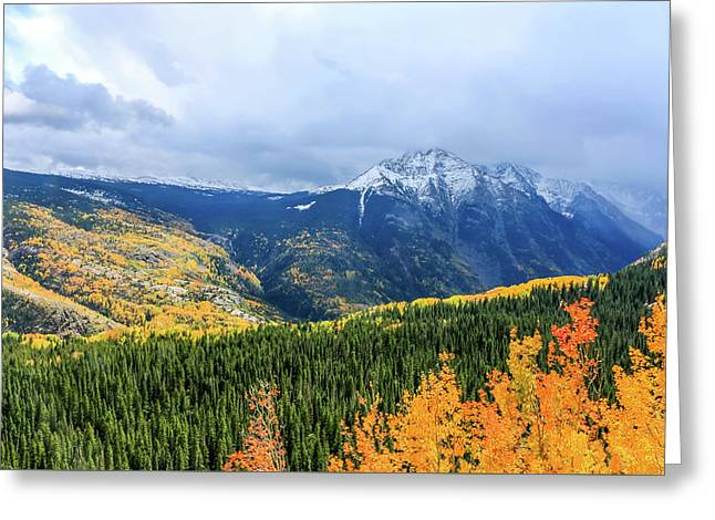 Colorado Aspens And Mountains 3 Greeting Card