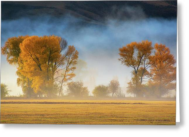 Colorado Autumn Fog Greeting Card