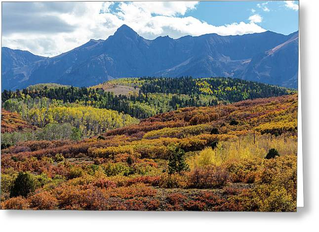 Greeting Card featuring the photograph Colorado Color Bonanza by James BO Insogna