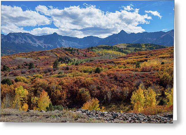 Greeting Card featuring the photograph Colorado Color Lalapalooza by James BO Insogna