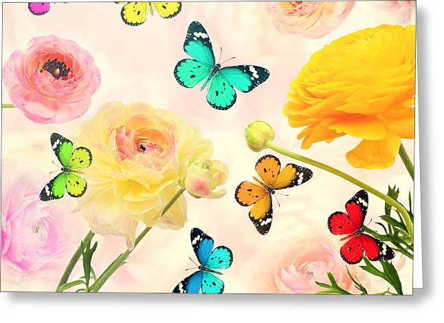 Colorful Beautiful Flowers And Greeting Card